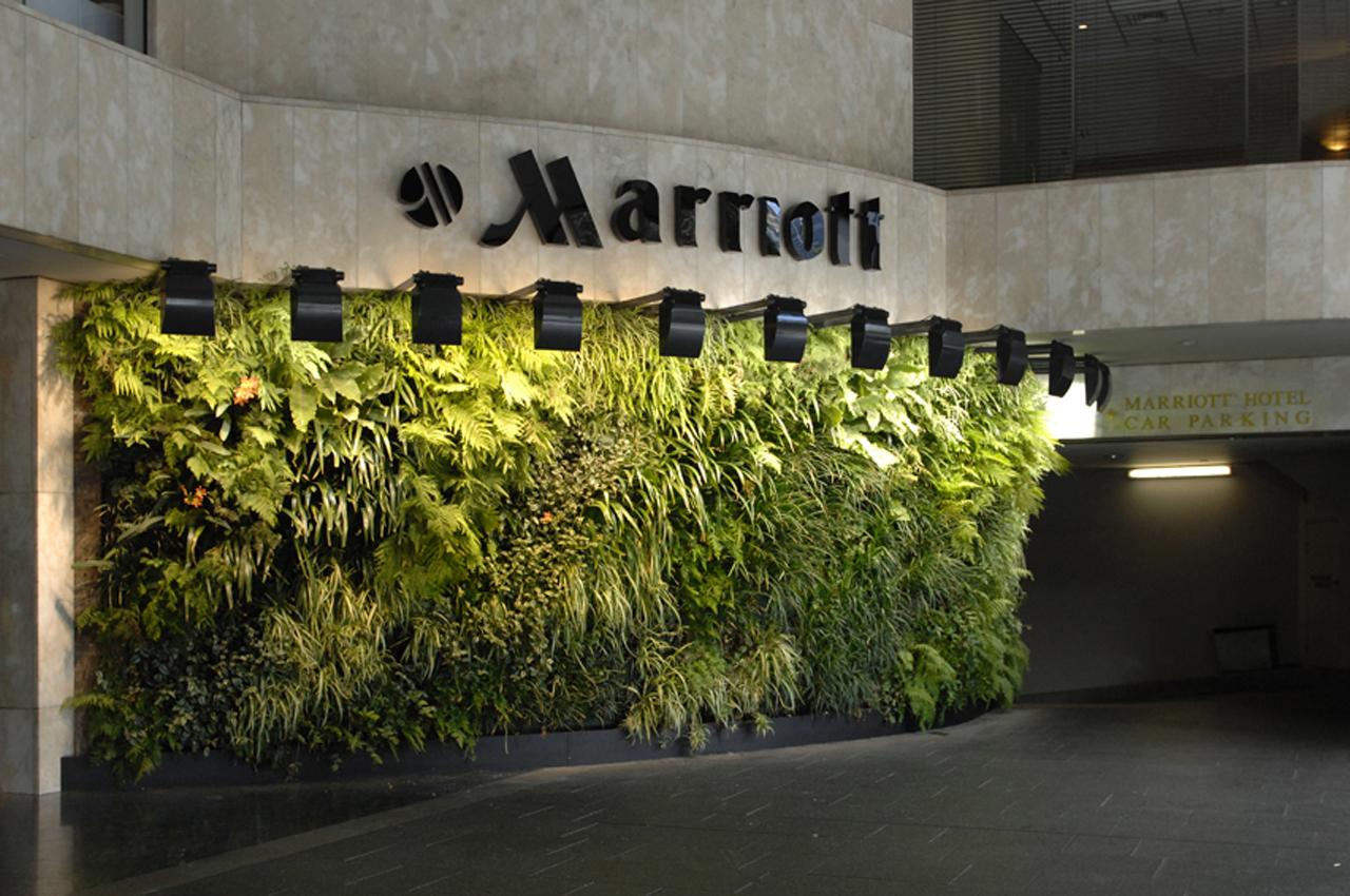Зеленая стена в отеле Мариотт