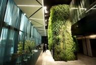 Дизайн офисов и гостиниц1716018324