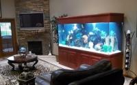 аквариум в интерьере гостинной фото