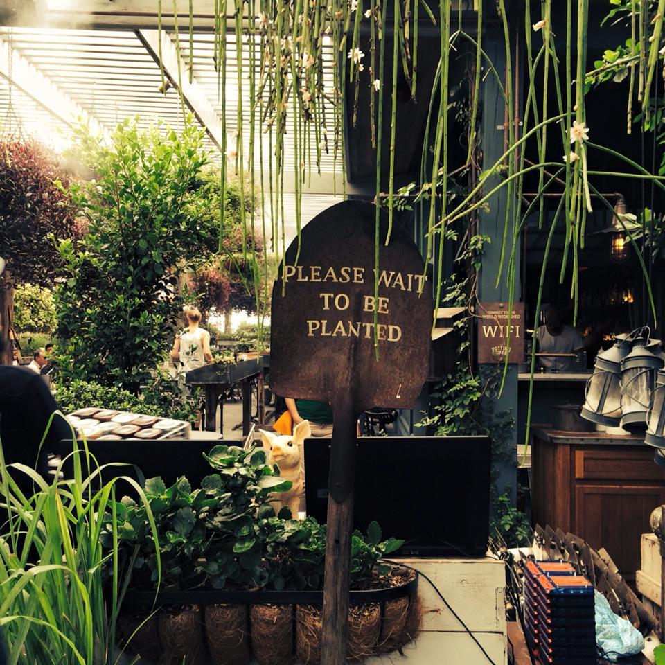 Дизайнеры кафе The Ground сделали упор на обилии живых растений